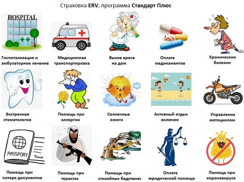страховка ERV стандарт плюс