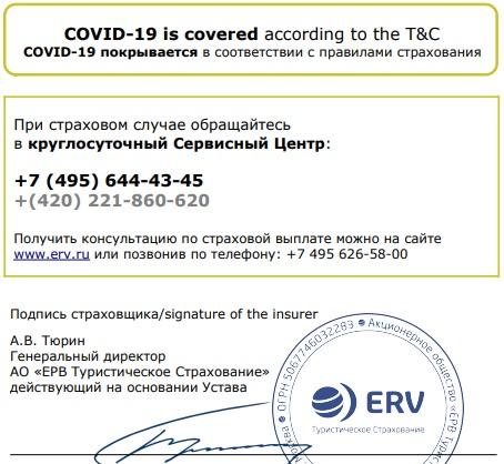 покрытие полисом ERV вируса Covid-19