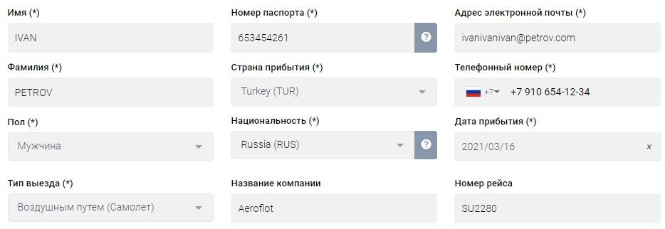 образец заполнения электронной анкеты в Турцию